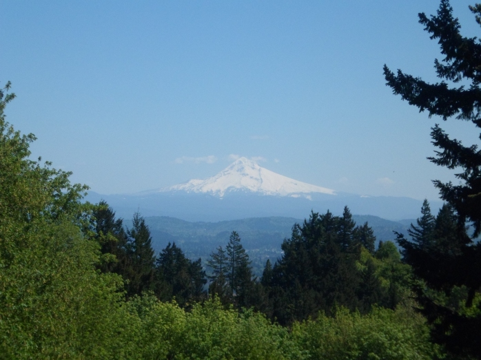 View of Mt. Hood from Council Crest Park