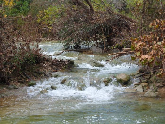 Still more rapids