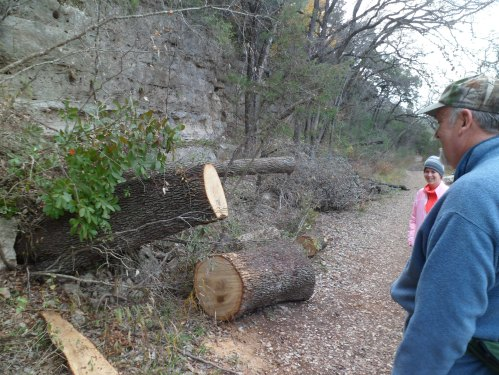 Tree that was formerly across the trail