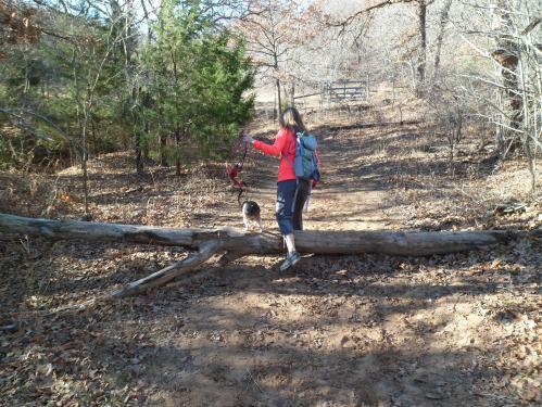 hopping over a log