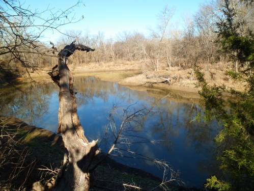 Hickory Creek from the trail, which feeds into Lake Lewisville