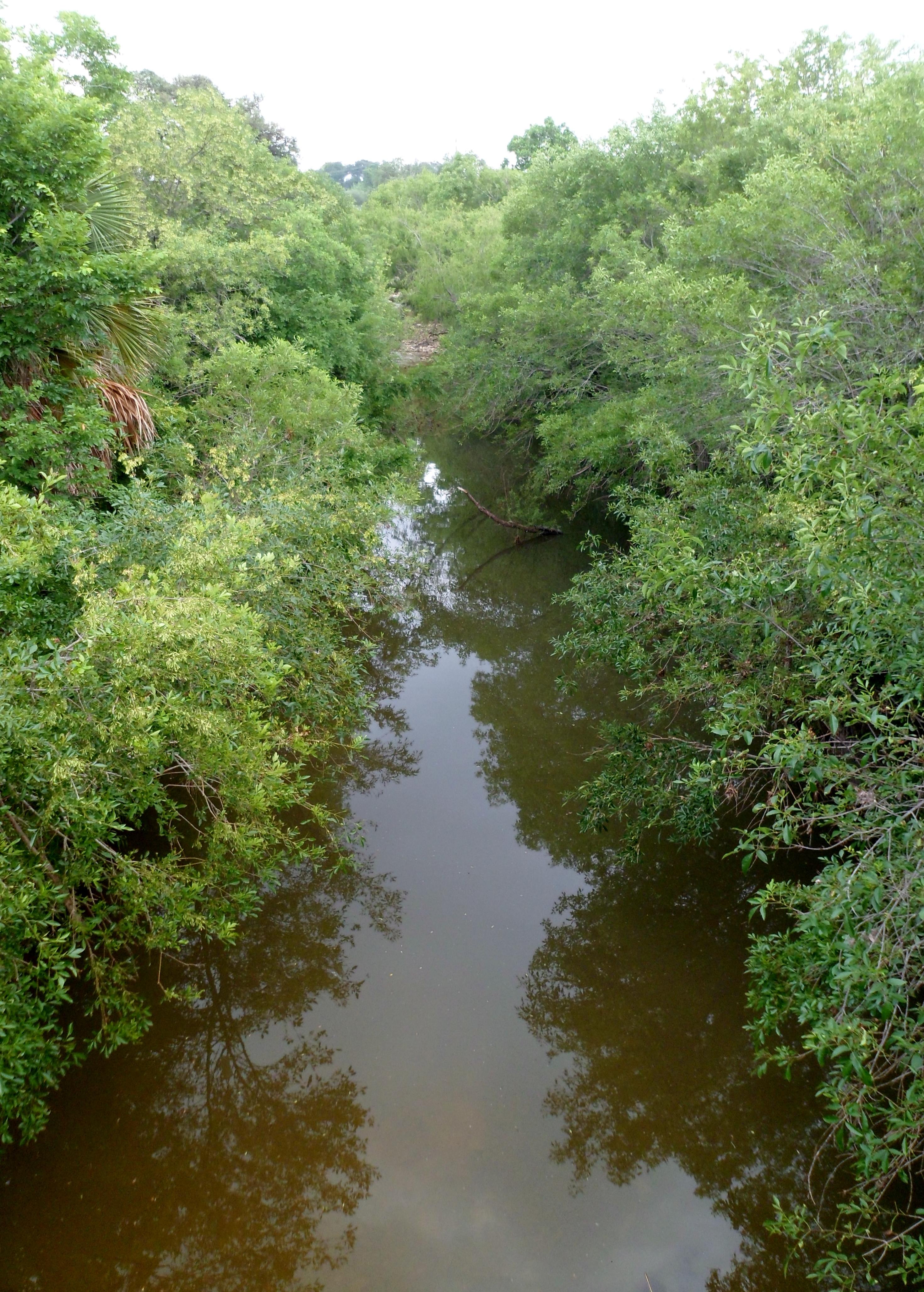 Shoal Creek Trail 5 9 15 Pierce Wanderings
