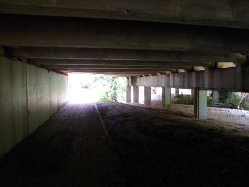 under one of the bridges downtown (10th St?)
