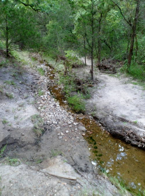creek at the bottom