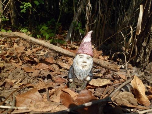 Gnome!