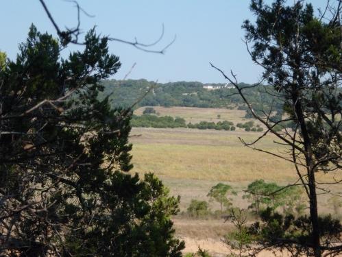 "Court's ""Van Gogh wheatfields"" pic"