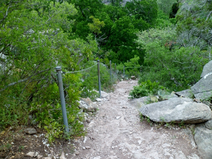 Trail down to the falls