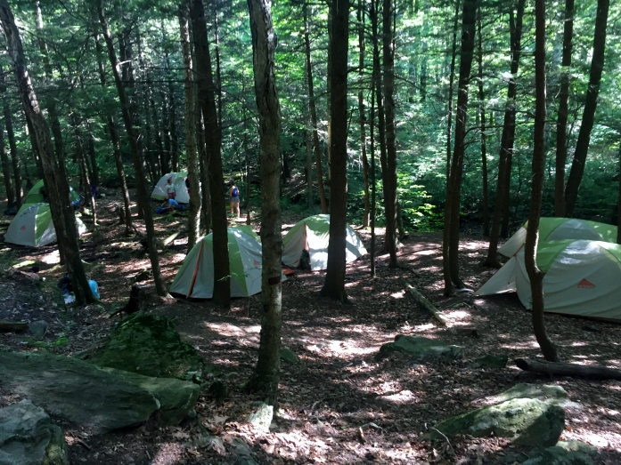 Greenagers camp