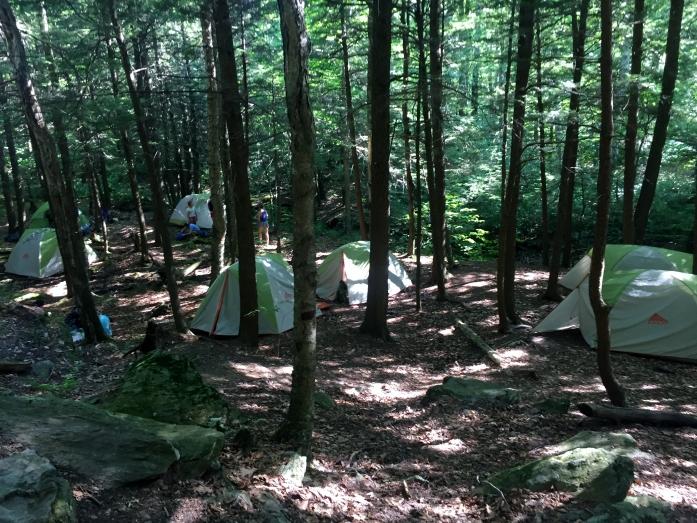 Greenagers camp
