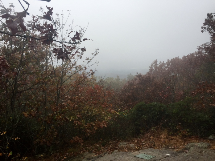 cold and foggy at the Southern Terminus